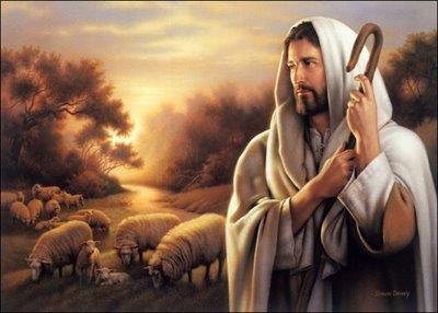 """""""Um só rebanho e um só pastor"""""""