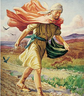 Apostolado de filhos de Deus – Meditações Dominicais – XI DOMINGO COMUM Ano B